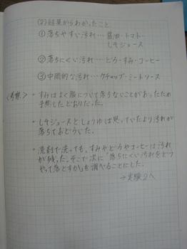 IMG_0333.JPG