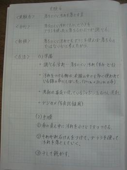 IMG_0342.JPG